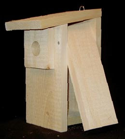Coveside Economy Bluebird House