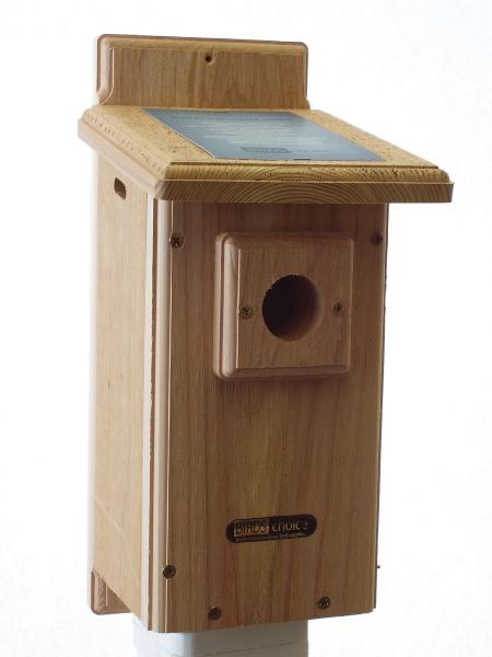 Bird's Choice Standard Bluebird House