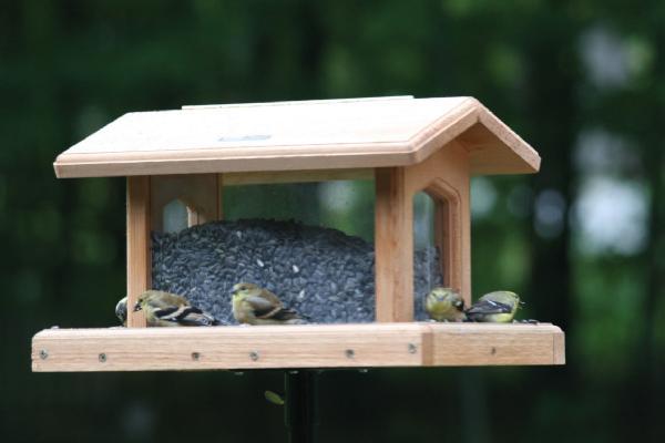 Bird's Choice 6 Quart Cedar 4-Sided Feeders