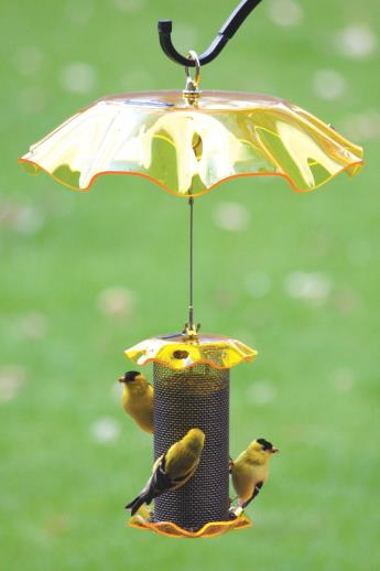 Bird's Choice Weather Guard - Yellow