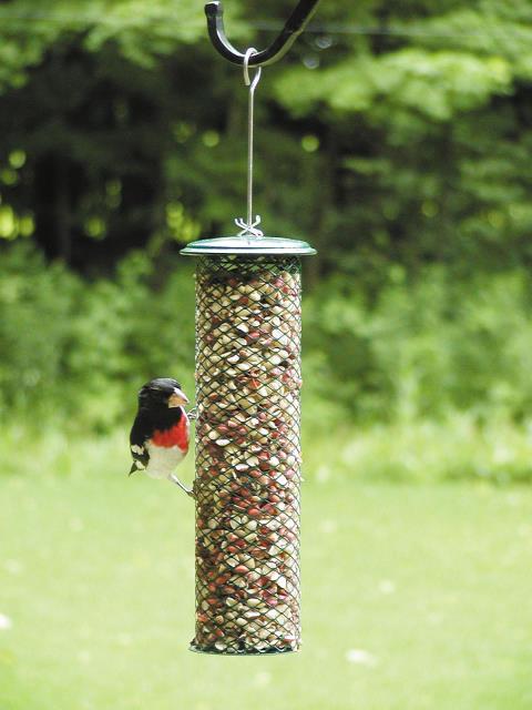 Bird's Choice Magnet Mesh Metal Peanut Feeder
