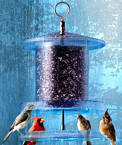 All Weather Feeder photo