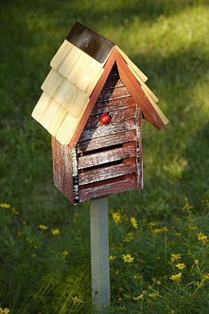 ladybug house plans