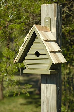 Heartwood Chick Birdhouse