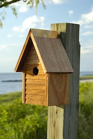 Heartwood Starter Home Birdhouse