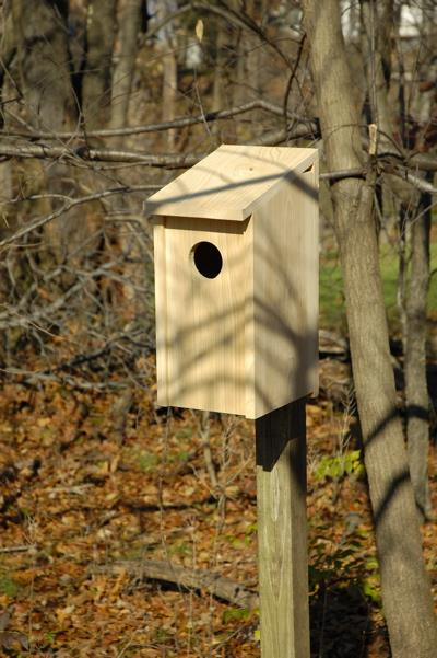 Heartwood Screech Owl Joy Box Birdhouse